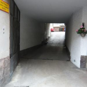 P1130556.jpg